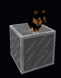 Animania Cats and Dogs [1.12.2]